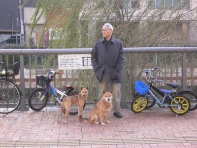 犬達と爺さんです